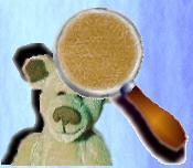 l'ours en mohair : Kiktof